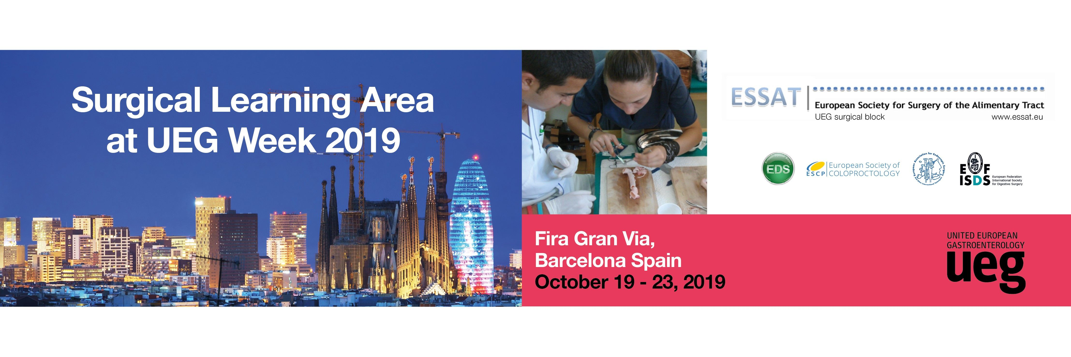 Registration is now open for the UEG Week 2019 Surgical Learning Area